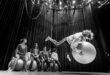 Jediná cirkusantská škola vEurópe mieri do Nitry